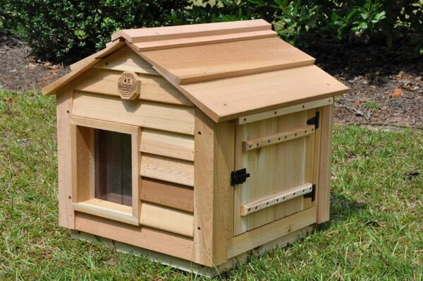 20-inch-cathouse-w-clean-out-door