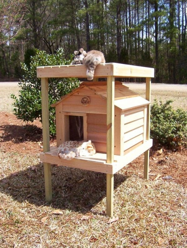 "20"" Cat House with optional platform and loft"