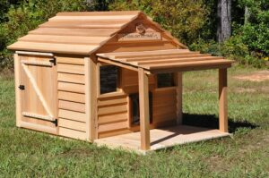 Cool Cat Cottage shown with optional porch and deck and Peek-a-boo Clean out door.
