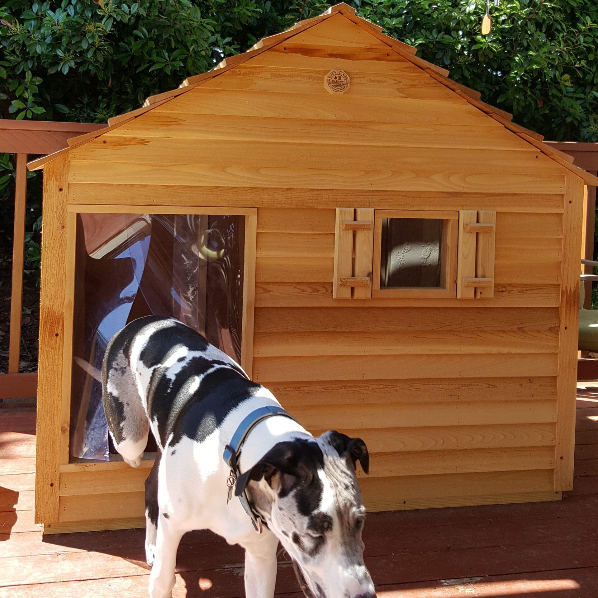 Giant Dog House Custom Cedar