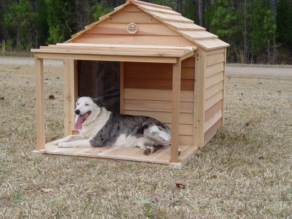 Large dog house with porch & deck