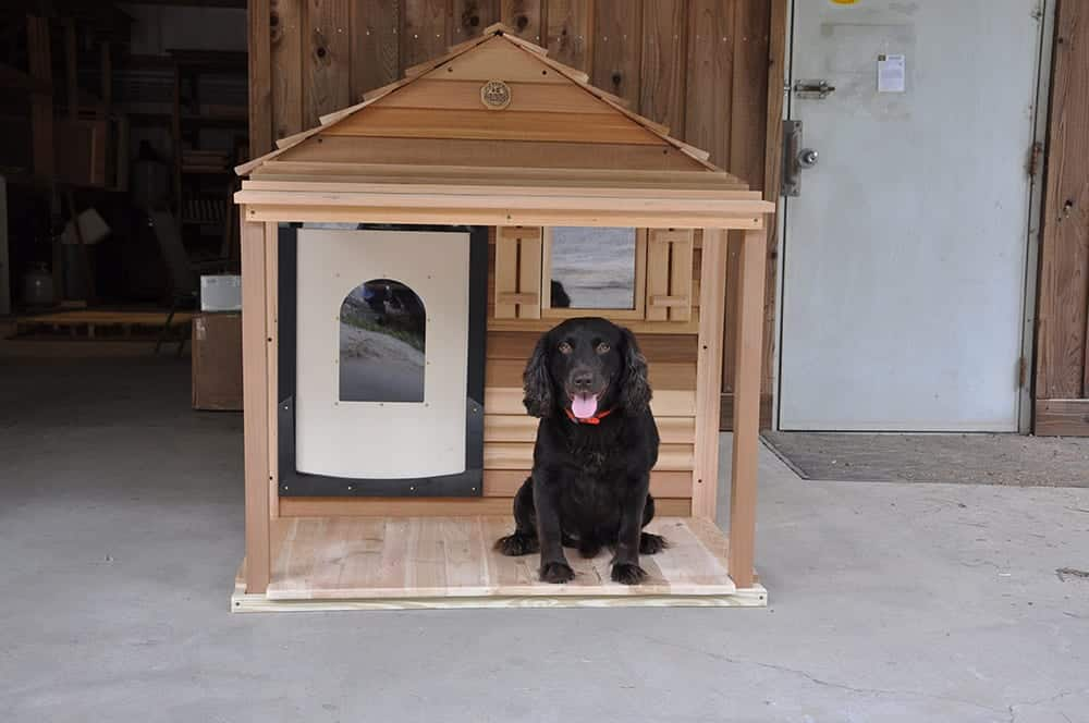 Custom Dog House Amp Outside Cat House Customize With Ac