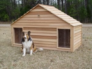 Large Duplex Two Door Dog House
