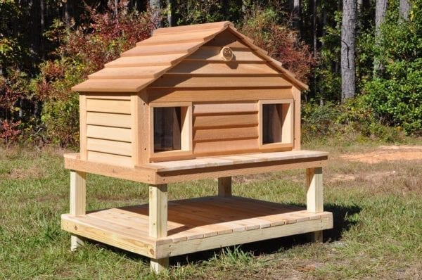 Duplex Cat house on Platform with optional Raised Foundation