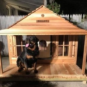 Bullet in front of his doghouse